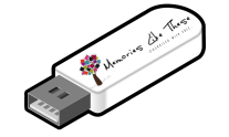 usb with logo